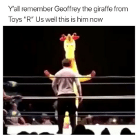 "Ayooooo 😂 my mans got a new job: Y'all remember Geoffrey the giraffe from  Toys ""R"" Us well this is him now Ayooooo 😂 my mans got a new job"
