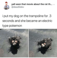 "Memes, Pokemon, and Movie: yall seen that movie about the rat th... V  @deadliidev  i put my dog on the trampoline for.3  seconds and she became an electric  type pokemon <p>Shocky floofer via /r/memes <a href=""https://ift.tt/2L6AHsh"">https://ift.tt/2L6AHsh</a></p>"