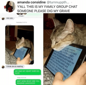 Cute, Family, and Group Chat: Y'ALL THIS IS MY FAMILY GROUP CHAT  SOMEONE PLEASE DIG MY GRAVE  amanda considine @turnnuppth..  3 People  Not Daca  Yesterday 9 48 PM  as ne dreaties  of me. He's still hard  elease He fucked me and made me  and never told him to stop.  y and I feel a slight  es his cock twitches with his  I think she is reading  AW OMG MY HEART SHES SO  CUTE  ed  Today 12:29 AM  WAIT MOM WHAT ARE YOU  READING LMAOOOOO Lmafooooo