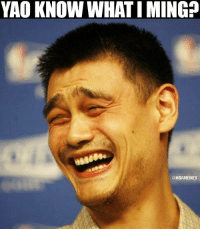 Yao Ming retired 5 years ago today.: YAO KNOW WHAT IMING?  @NBAMEMES Yao Ming retired 5 years ago today.