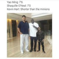 Shorter than the minions 😂: Yao Ming: 7'6  Shaquille O'Neal: 70  Kevin Hart: Shorter than the minions Shorter than the minions 😂
