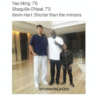 YOU ARE HELLA SHORT😂 @funnyblack.s ➡️ TAG 5 FRIENDS ➡️ TURN ON POST NOTIFICATIONS NOCHILL: Yao Ming: 7'6  Shaquille O'Neal 7'0  Kevin Hart: Shorter than the minions  FUNNY BLACKS YOU ARE HELLA SHORT😂 @funnyblack.s ➡️ TAG 5 FRIENDS ➡️ TURN ON POST NOTIFICATIONS NOCHILL