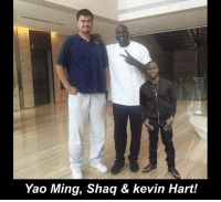 Greatest picture ever taken!!: Yao Ming, Shaq & kevin Hart! Greatest picture ever taken!!