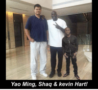 This is the greatest picture ever taken.: Yao Ming, Shaq & kevin Hart! This is the greatest picture ever taken.
