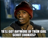 YATLLGOTANYMORE OF THEM GIRL  SCOUT COOKIES?  memegen com