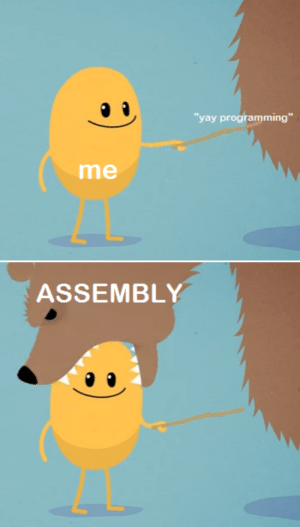 """Seriously though, mad respect to anyone who could code in it: yay programming""""  me  ASSEMBLY Seriously though, mad respect to anyone who could code in it"""