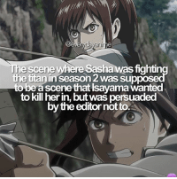 Anime, Naruto, and Onepiece: ycayanin  re scene where Sashawas fightin  the tiranin Season 2 was supp  be a scene that Isayama wanted  to kill herin, butwas persuaded  by the editor not to. :( anime: attack on titan ): - onepiece anime animememes animeedit animelover fairytail blackbutler blueexorcist tokyoghoul attackontitan deathnote hunterxhunter narutoshippuden naruto noragami onepunchman haikyuu kurokonobasket thesevendeadlysins owarinoseraph animefacts yurionice swordartonline mysticmessenger 👀 assassinationclassroom iloveanime animeworld weeb