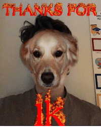 Thanks y'all y'here me ( dog face on my face reveal ): YEA Thanks y'all y'here me ( dog face on my face reveal )