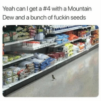 Hungry, Yeah, and Mountain Dew: Yeah can I get a #4 with a Mountain  Dew and a bunch of fuckin seeds Hungry birb