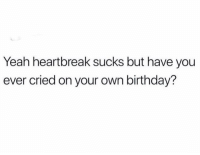 Birthday, Facts, and Funny: Yeah heartbreak sucks but have you  ever cried on your own birthday? Facts smh