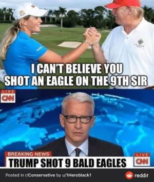 Yeah. I'm sure he's shooting a ton of eagles.: Yeah. I'm sure he's shooting a ton of eagles.