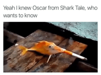 Blackpeopletwitter, Yeah, and Shark Tale: Yeah I knew Oscar from Shark Tale, who  wants to know <p>Workin at the car wash (via /r/BlackPeopleTwitter)</p>