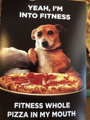 Fitness is my life: YEAH, I'M  INTO FITNESS  FITNESS WHOLE  PIZZA IN MY MOUTH Fitness is my life
