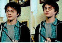 Harry Potter, Memes, and Yeah: Yeah?  iry me When someone thinks they know more about Harry Potter than I do 🙌 https://t.co/wQ0CUN1Ank