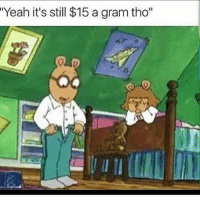 """Yeah it's still $15 a gram tho"" Lmao arthur"