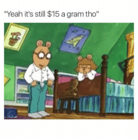 "Fucking, Memes, and Yeah: Yeah it's still $15 a gram tho"" So fucking tragic."