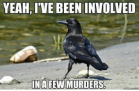 But Nevermore: YEAH,IVE BEEN INVOLVED  IN A FEW MURDERS But Nevermore