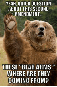 "YEAH,  QUICK QUESTION  ABOUT THIS SECOND  AMENDMENT  THESE ""BEAR ARMS.""  WHERE ARE  THEY  COMING FROM? Regarding The Second Amendment..."