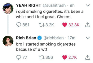 Smoking, Wtf, and Yeah: YEAH RIGHT @sushitrash 9h  i quit smoking cigarettes. it's been a  while and i feel great. Cheers.  851 03.2K 32.3K  Rich Brian@richbrian 17m  bro i started smoking cigarettes  because of u wtf me💨irl