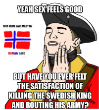 feels good: YEAH SEX FEELS GOOD  THIS MEME WAS MADY BY  NORWAY GANG  BUT HAVEYOU EVER FELT  THE SATISFACTION OF  KILLING THE SWEDISH KING  AND ROUTINGHISARMY