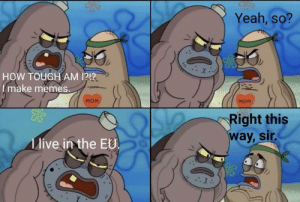 Dank, Memes, and Target: Yeah, so?  HOW TOUGH AM 1212  I make memes.  MOM  MOM  ight this  way, sir  live in the EU W I T H O U T A N Y M I L K. by Rudydog17 FOLLOW HERE 4 MORE MEMES.