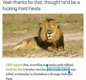 Also a lion! by armaan615 FOLLOW 4 MORE MEMES.: Yeah thanks for that, thought he'd be a  fucking Ford Fiesta  CNN reports that, according to senior park official,  Cecil the lion's brother Jericho, who is also a lion, was  killed on Saturday in Zimbabwe's Hwange National  Park Also a lion! by armaan615 FOLLOW 4 MORE MEMES.