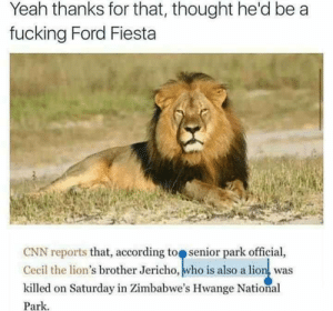 never know by zooweemama1234891 FOLLOW 4 MORE MEMES.: Yeah thanks for that, thought he'd be a  fucking Ford Fiesta  CNN reports that, according to senior park official,  Cecil the lion's brother Jericho, who is also a lion, was  killed on Saturday in Zimbabwe's Hwange National  Park never know by zooweemama1234891 FOLLOW 4 MORE MEMES.