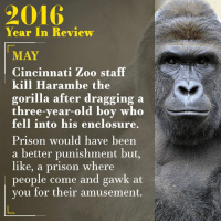 cincinnati zoo: Year In Review  MAY  Cincinnati Zoo staff  kill Harambe the  gorilla after dragging a  three-year-old boy who  fell into his enclosure.  Prison would have been  a better punishment but,  like, a prison where  people come and gawk at  you for their amusement.