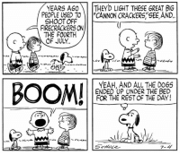 "Independence Day, Memes, and Yeah: YEARS AGOTHEY'D LIGHT THESE GREAT BIG  PEOPLE USED TO""CANNON CRACKERS,""SEE AND.  SHOOT OFF  FIRECRACKERS ON  THE FOURTH  YEAH, AND ALL THE D0GS  ENDED UP UNDER THE BED  FOR THE REST OF THE DAY!  7-4 Happy Independence Day! 🇺🇸🎆 This strip was published on July 4, 1960."