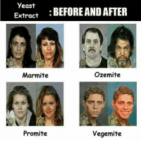 Vegemiteeeee: yeast  BEFORE AND AFTER  Extract  Ozemite  Marmite  Vegemite  Promite Vegemiteeeee