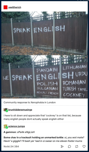 Community, Tumblr, and Appreciate: yeettherich  SPEAK ENGLISH  PANJABI LITHUANIAN  WE SPEAK ENGLISH URDU  POLISH ROMANIAN  TURKISH TAMIL  BULGARIAN  BENGALI FRENCH  COCKNEY  Community response to Xenophobia in London  brunhiddensmusings  i have to sit down and appreciate that 'cockney' is on that list, because  many english people dont actually speak english either  science-jumps  A gammon: sPeAk eNgLisH  Some chav in a tracksuit holding an unmarked bottle: oi, you wot mate?  Havin' a giggle? /'ll bash yer 'ead in oi swear on me eleven foster mums  Notki:34 384 English, do you speak it?