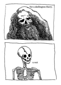 Memes, 🤖, and Wot: Yer a skellington Harry.  u wot If you know who drew this please let me know so I can credit them