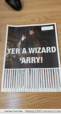 """Finals, Memes, and Http: YER A WIZARD  ARRY!  Like this? You'll hate  MUGGLENET MEMES.COM <p>Fellow student cheering up the masses before finals <a href=""""http://ift.tt/1psk7qp"""">http://ift.tt/1psk7qp</a></p>"""