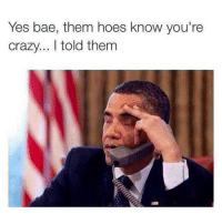 Memes, 🤖, and Sake: Yes bae, them hoes know you're  crazy... told them For fucks sake..😩😂😂