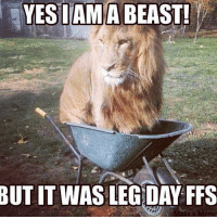Don't judge me. . @doyoueven 💯: YES I AM A BEAST!  BUTITWAS LEG DAY FFS Don't judge me. . @doyoueven 💯