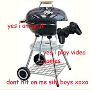 Meme, Video, and Boys: yes i am grlit  yesi play video  ames  dont hit on me sil boys xoxo Gamer grill - Meme by sroubinno123 :) Memedroid