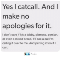 Orly: Yes I catcall. And I  make no  apologies for it  I don't care if it's a tabby, siamese, persian,  or even a mixed breed. If I see a cat l'm  calling it over to me. And petting it too if I  can.  Postieo