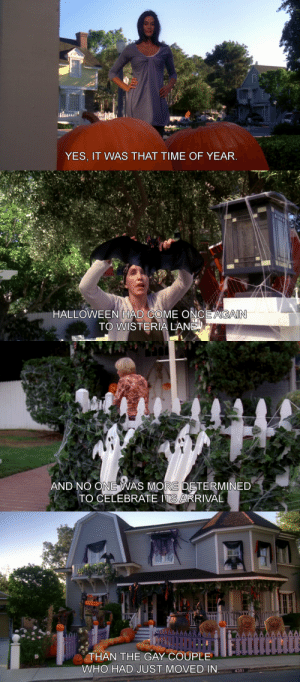 Desperate, Halloween, and Tumblr: YES, IT WAS THAT TIME OF YEAR   HALLOWEEN HAD COME ONCE AGAIN  TO WISTERIA LANE   AND NO ONE WAS MORE DETERMINED  TO CELEBRATE ITS ARRIVAL   THAN THE GAY COUPLE  WHO HAD JUST MOVED IN  4351 desperatehousewivesgifs:Desperate Housewives s04e06 Now I Know, Don't Be Scared