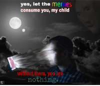 Memes, Reddit, and Wonder: yes, let the memes  consume you, my child  Che  without them, vou are  nothing [Src]