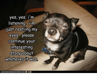Lol: yes, yes, I m  listening, i m  just resting my  eyes, please  continue your  interesting  story about  whatever it was Lol