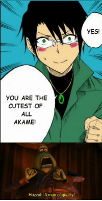 Akame Ga Kill: YES!  YOU ARE THE  CUTEST OF  ALL  AKAME!  Huzzah! A man of quality!