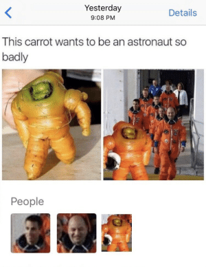 Carrot, Yesterday, and Astronaut: Yesterday  9:08 PM  Details  This carrot wants to be an astronaut so  badly  People