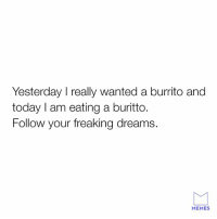 Follow your dream, especially if they are burrito.: Yesterday I really wanted a burrito and  today I am eating a buritto.  Follow your freaking dreams.  MEMES Follow your dream, especially if they are burrito.