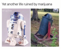 Follow @toptree for the dankest weed memes: Yet another life ruined by marijuana  Top Tree Follow @toptree for the dankest weed memes