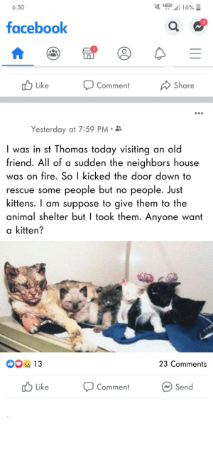 Did he really..: YG 16%  6:50  facebook  ל Like  Share  Comment  Yesterday at 7:59 PM • 3  | was in st Thomas today visiting an old  friend. All of a sudden the neighbors house  was on fire. So I kicked the door down to  rescue some people but no people. Just  kittens. I am suppose to give them to the  animal shelter but I took them. Anyone want  a kitten?  1131  23 Comments  13  ,ל  W Send  Like  Comment  || Did he really..