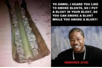yo dawg: YO DAWG!, I HEARD YOU LIKE  TO SMOKE BLUNTS, So I PUT  A BLUNT IN YOUR BLUNT, SO  YOU CAN SMOKE A BLUNT  WHILE YOU SMOKE A BLUNTI  SANCHEZ (216)