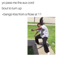 Pass Me The Aux Cord: yo pass me the aux cord  bout to turn up  *bangs Kiss from a Rose at 11