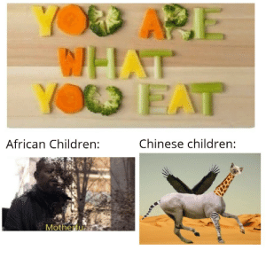 Not made with Mematic: YOD APE  WHAT  YO EAT  Chinese children:  African Children:  Motherfu Not made with Mematic
