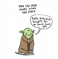 May the 4th be with you and may your day be slightly more depressing thanks to these sad Star Wars facts. sadanimalfacts maythe4thbewithyou: YODA CAN READ  MINDS USING  THE FORCE.  Pretty disturbing  thoughts for  an ewok have  you May the 4th be with you and may your day be slightly more depressing thanks to these sad Star Wars facts. sadanimalfacts maythe4thbewithyou