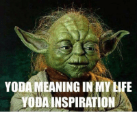 New Yoda Quotes Memes   Let Go Memes, Quoted Memes